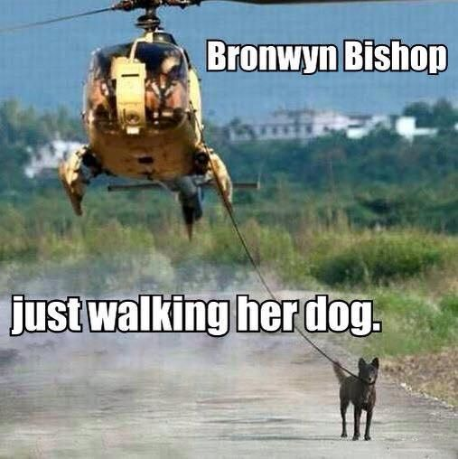 https://www.google.com.au/search?q=bronwyn bishop memes ...