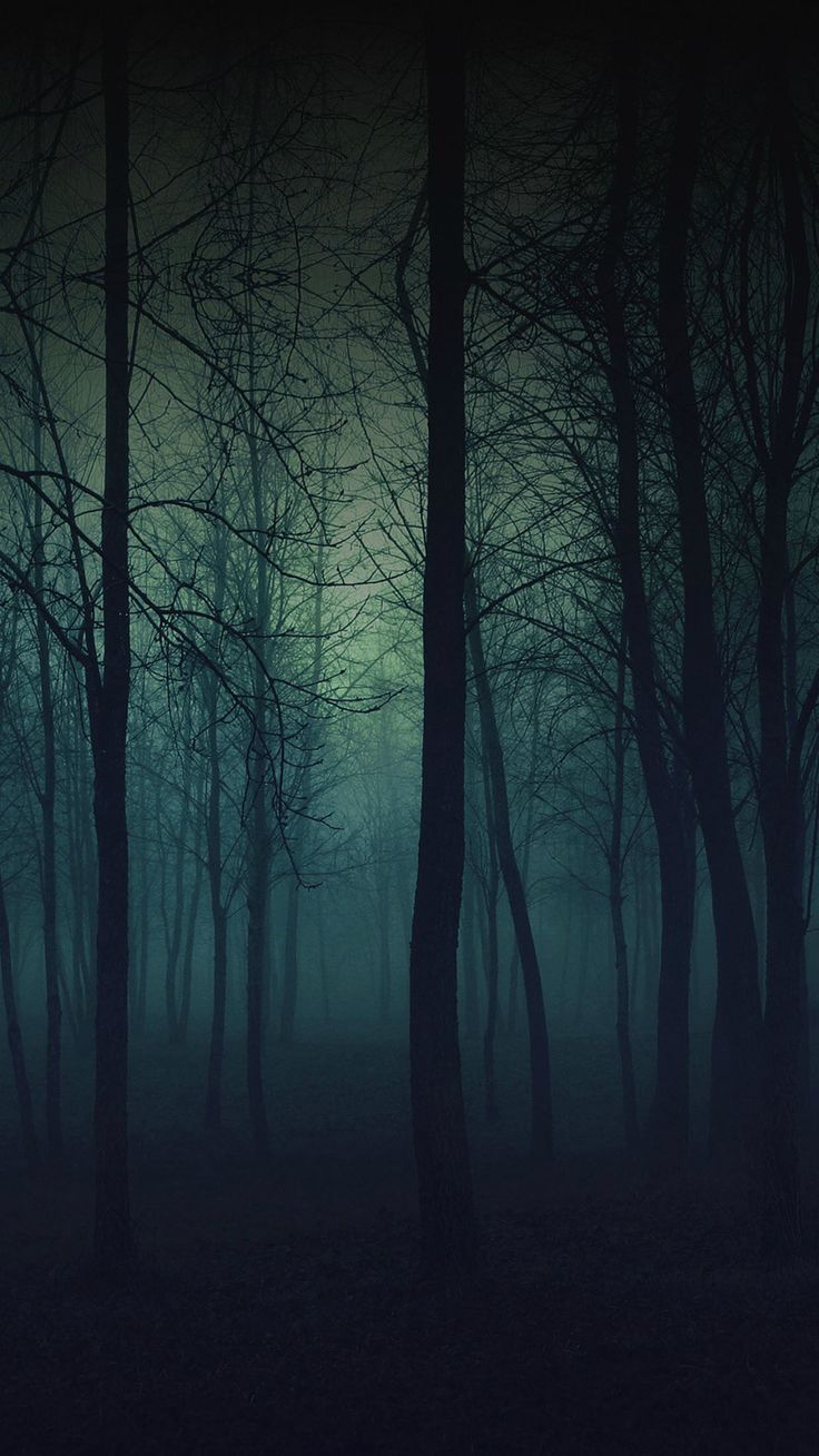 Eerie Forest Night  #iPhone #6 #plus #wallpaper