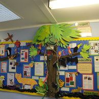 Amazon Jungle Display, classroom displays, class display, jungle, animals, monkey, Amazon, trees, Early Years (EYFS), KS1& KS2 Primary Teaching Resources