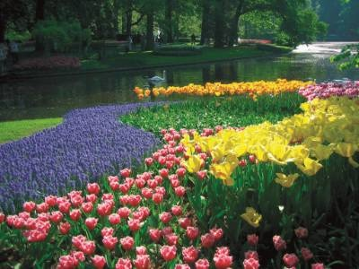 HOLLAND - The once in a decade Floriade in Holland sees absolutely beautiful gardens at their best, particularly here at the Keukenhof Gardens. Tauck lays on special itineraries to enjoy this bloomin' marvellous event. www.tauck.com/river-cruises