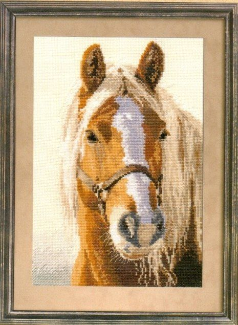 Cross-stitch Horse, part 1...   Kreuzstich