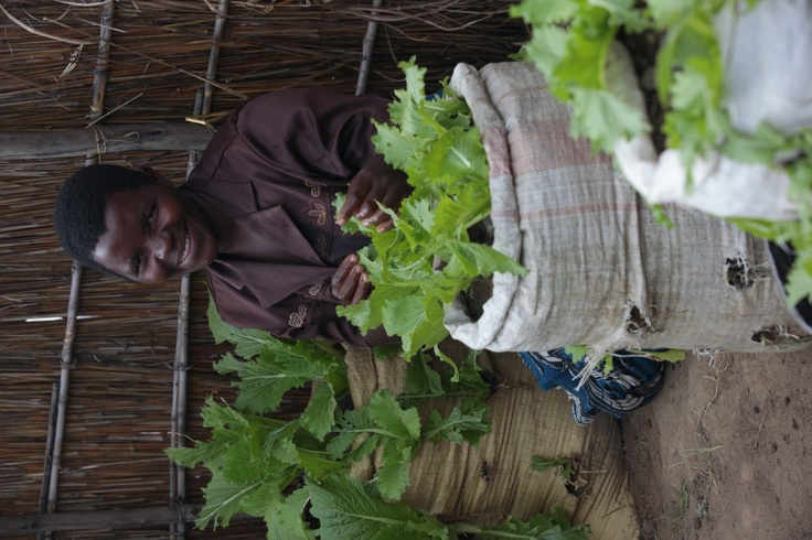 Here's a clever idea from the industrious women of Gideon village in Malawi, who grow heaps of healthy greens right beside their front doors.