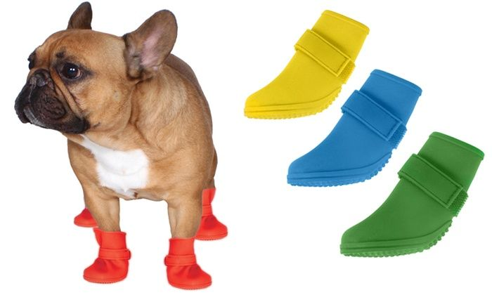 Jelly Wellies Rain Boots for Dogs: Jelly Wellies Rain Boots for Dogs