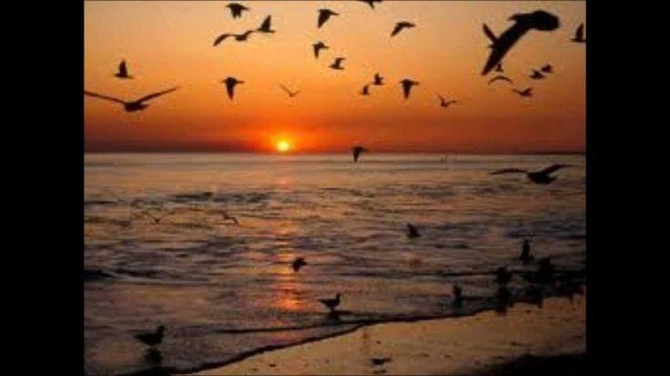 FRANCO BATTIATO - SUMMER ON A SOLITARY BEACH.wmv