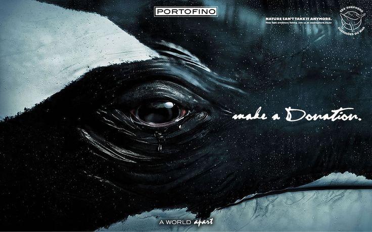 portofino-sea-shepherd-donation