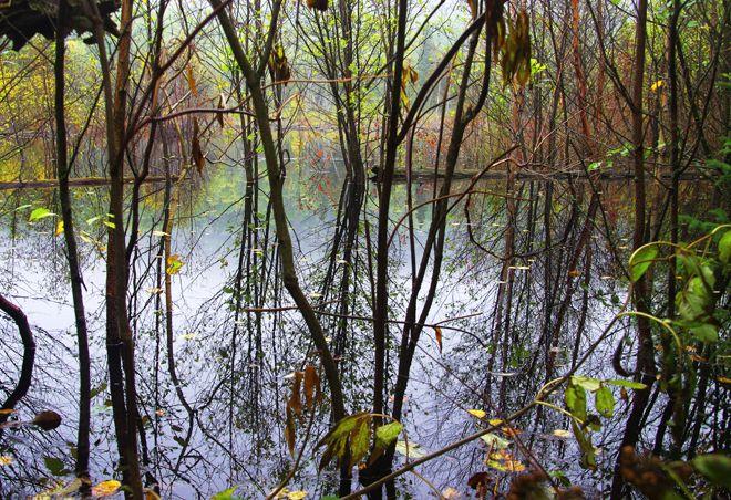 Inland lake - Hiking the Lake Superior Coastal Trail in Pukaskwa National Park: Part I