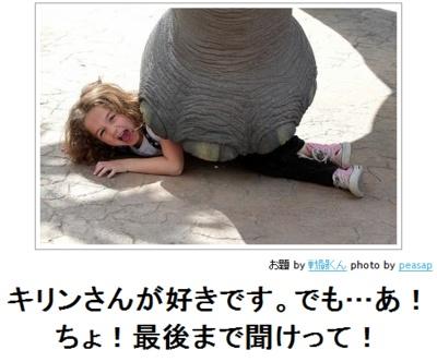 burnworks:    ボケて(bokete): 【ボケ】キリンさんが好きです。でも…あ!ちょ!最後まで聞けって!