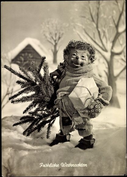 Of course hedgehogs celebrate Christmas!