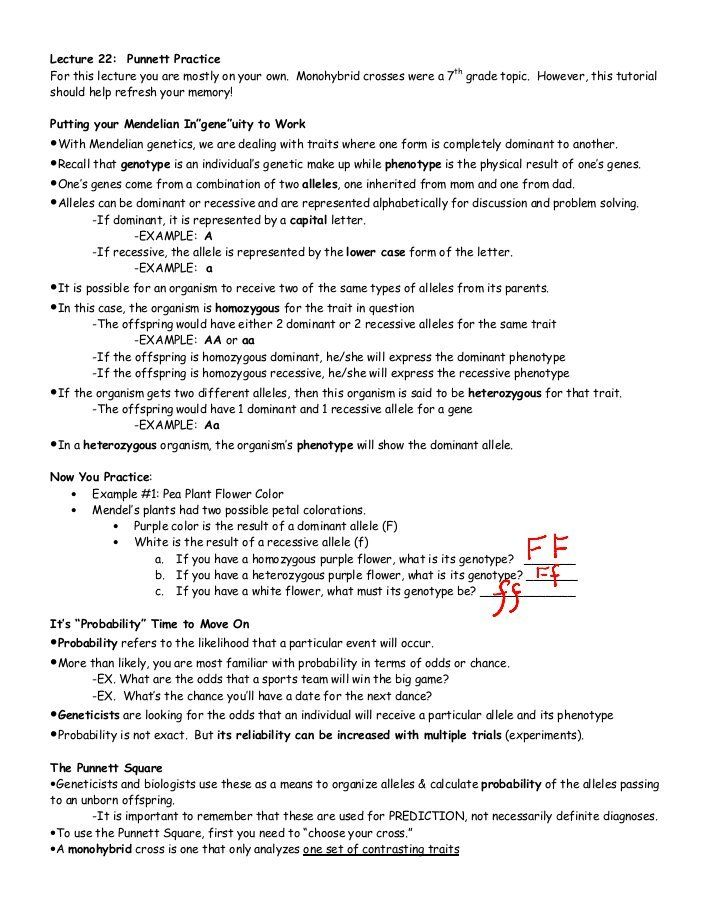 Molarity Practice Worksheet Answer Key - worksheet