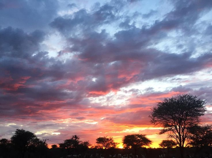 """I took this picture back in December at my grandmother's farm in Namibia. Pure sunset . No filter.…"""