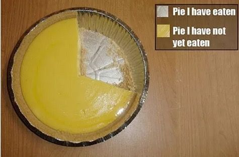 The 60 Silliest Pie Charts on the Internet | 22 Words