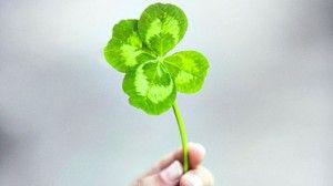 Quieres saber como atraer la buena suerte a tu vida? Descubre estos poderosos secretos de la suerte y cambia tu vida por completo! CLICK AQUI: www.atraerlabuenasuerteya.blogspot.com/2011/07/como-atraer-la-buena-suerte-secretos.html