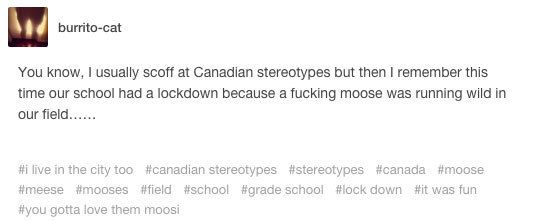 When there was an emergency at school: | Literally Just A Bunch Of Funny Tumblr Posts About Canadian Stereotypes