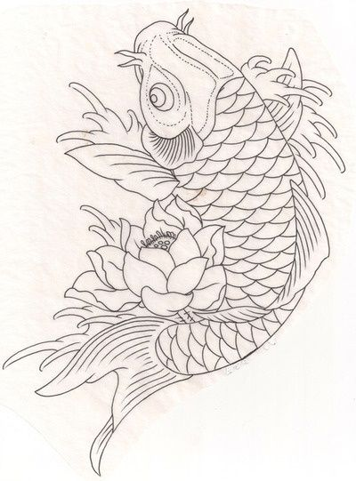How to draw a koi fish google search painting ideas for Japanese koi fish drawing