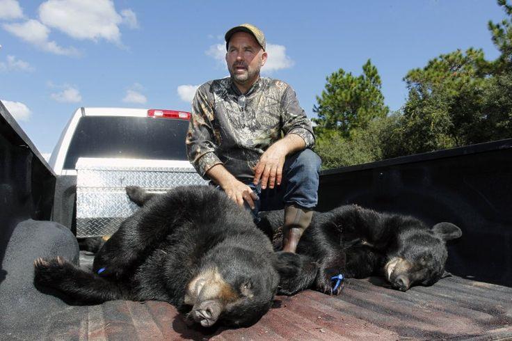 Laut Reglement durfte jeder Jäger nur ein Tier mit Gewehr oder Pfeil und Bogen...