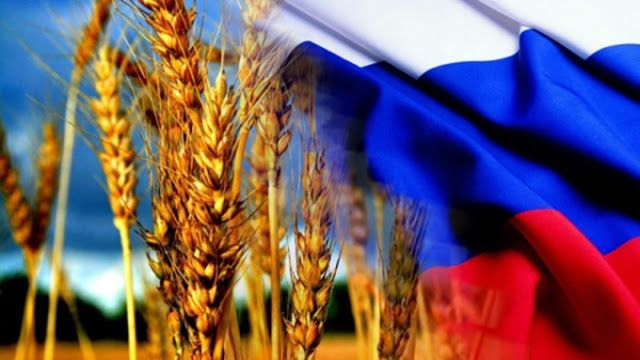 Russia becomes a global leader in grain exports, ministry of agriculture wants counter-s...