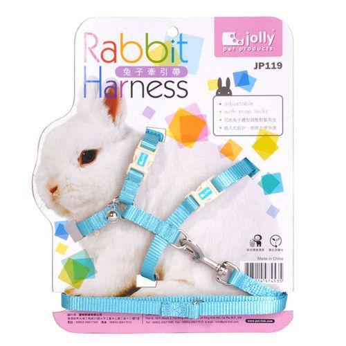 Jolly Rabbit Guinea Pig Chinchilla Ferret Pet Lead Leash Harness   eBay