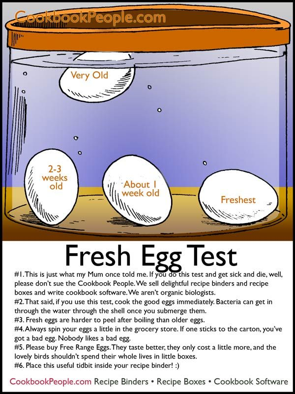 Fresh Egg Test  Follow us on Face Book at Fresh Wind Farm