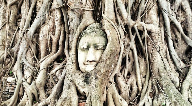 Wat Phra Mahatat #Ayutthaya