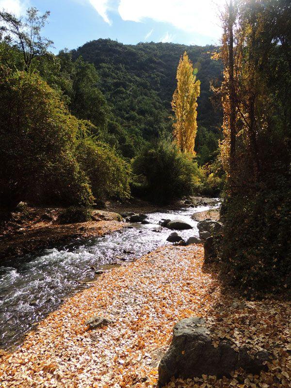 Santuario de la Naturaleza el Arrayan | Complejo turístico en la región metropolitana de Santiago, Chile