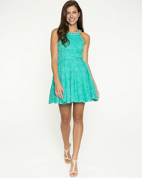 Embellished Lace Fit & Flare Dress