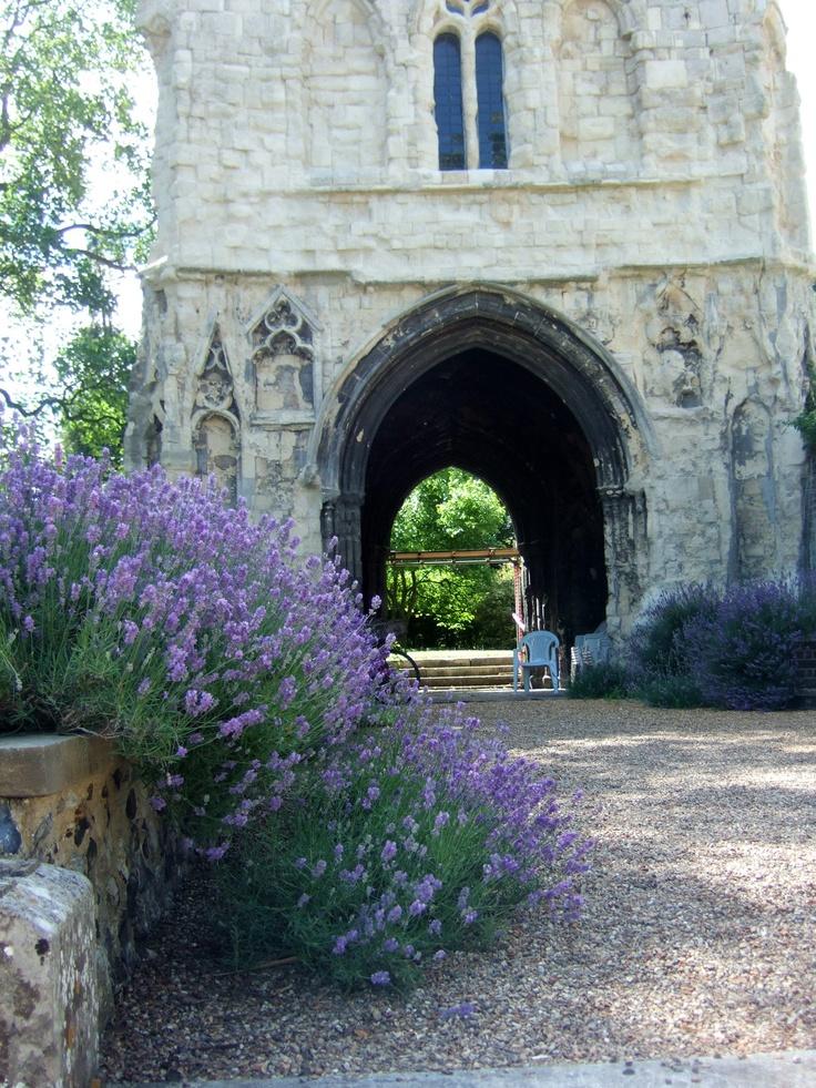 Bishops Garden-Norwich