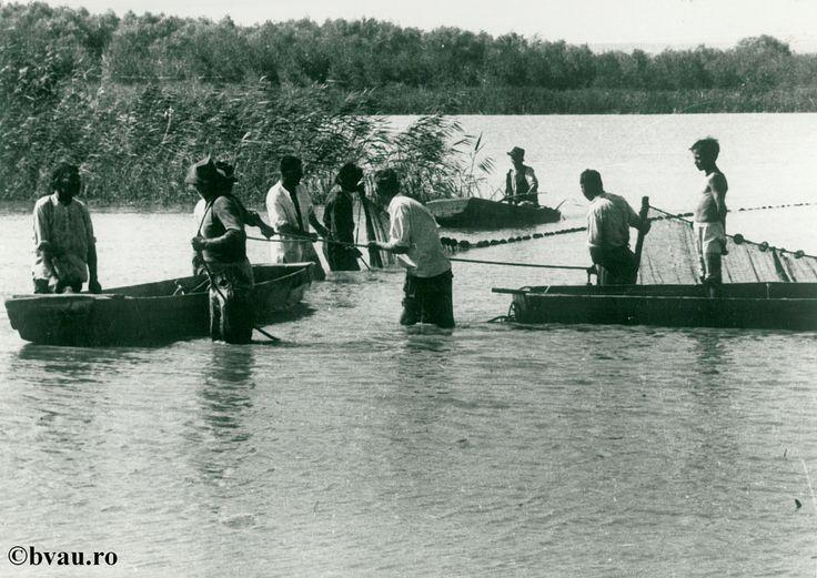 """Pescuit pe Brateş, anul 1950, Galati, Romania. Imagine din colecțiile Bibliotecii Județene """"V.A. Urechia"""" Galați."""