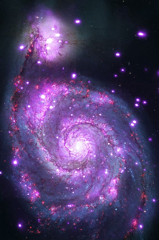 The Whirlpool galaxy seen in both optical (red, green and blue) and X-ray (purple) light. Image Credit: X-ray: NASA/CXC/Wesleyan Univ./R.Kilgard, et al; Optical: NASA/STScI