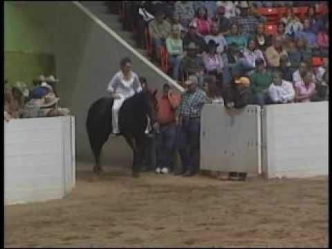 Stacy Westfall Championship Ride (dedicated to her Father that passed just a month before )she rides Bareback & Bridleless, AND she is deaf/mute. Controls her horse with body movements only, the same methods used by Native Americans. This is amazing.