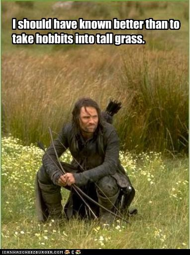 Silly hobbitses