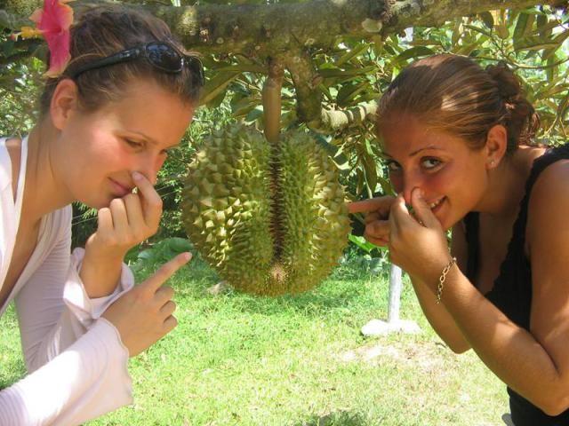 Chanthaburi Fruit Festival- Durian