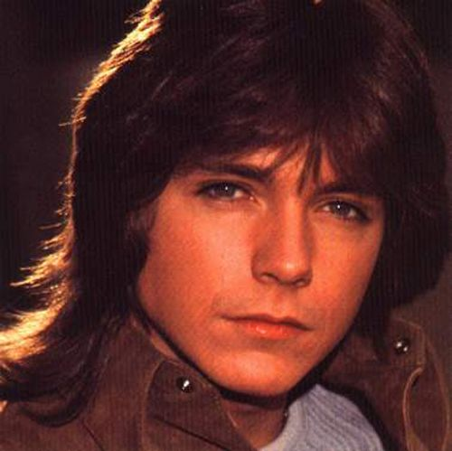 David Cassidy in the Partridge Family days ... SIGH!