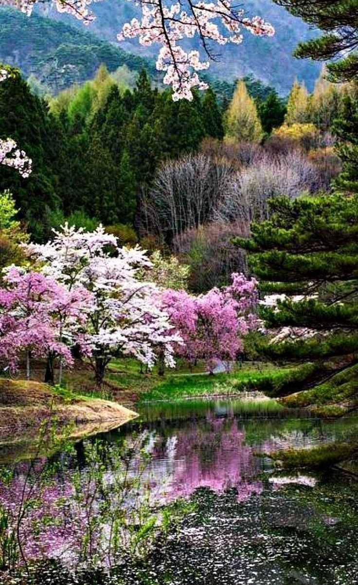 Pour rêver .... | images Japon in 2019 | Nature, Scenery, Beautiful landscapes