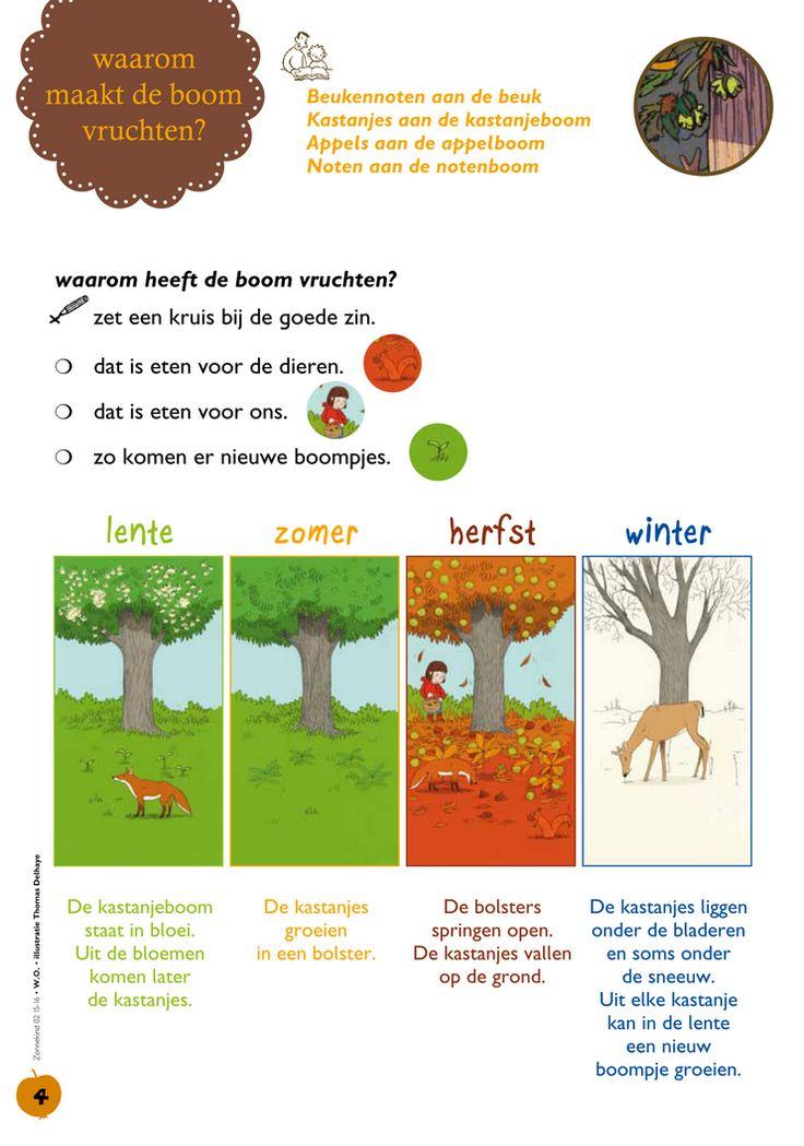 Seizoenen: Waarom maakt de boom vruchten? @keireeen