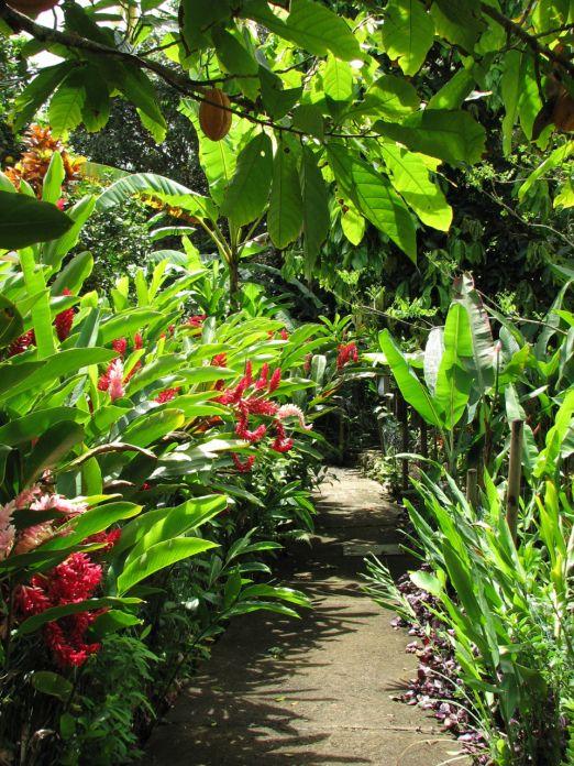 L'écomusée de Sainte-Rose, Guadeloupe - Points de passage #guadeloupe #pointsdepassage