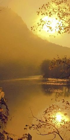 Gold Delaware River sunrise in New Jersey • photo: Bob Jagendorf on Flickr
