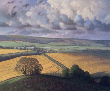 James Lynch. Cumulonimbus Clouds with Field of Rape,
