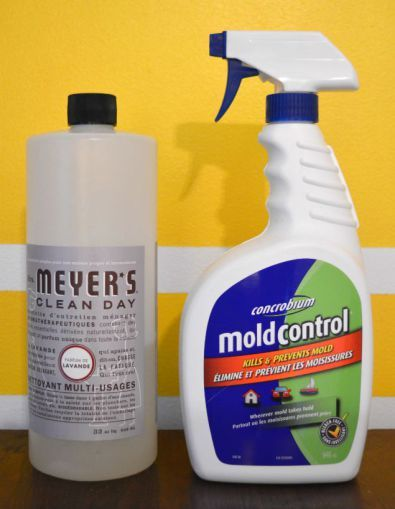 how to clean thrifted furniture mold killer