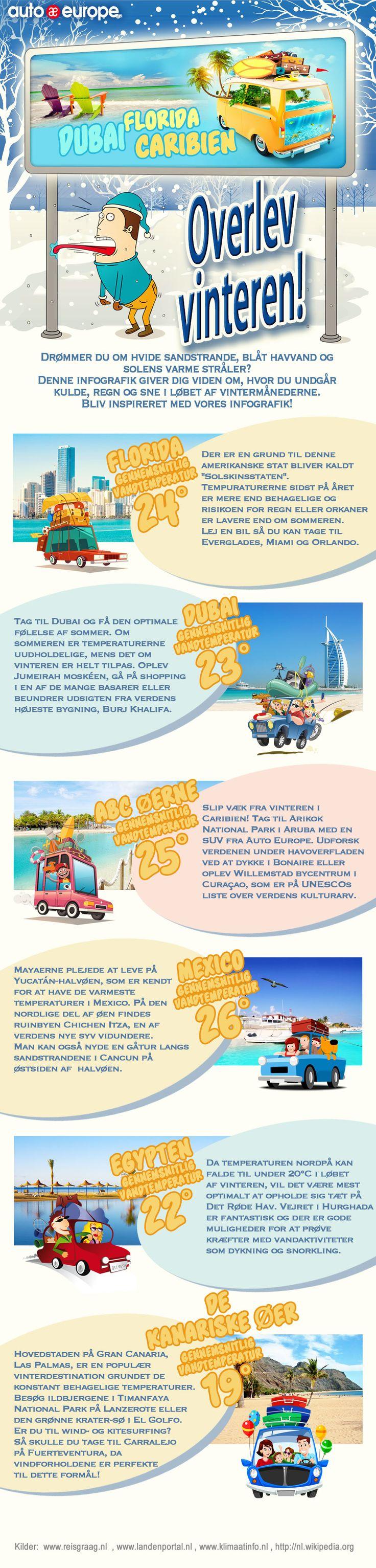 Infographic: Overlev vinteren - Find flere af vores infografikker her: http://www.autoeurope.dk/go/infographics/