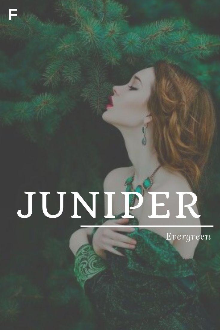 Juniper, meaning Evergreen, English names, J baby girl names