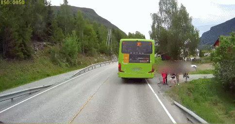 GIF Emergency braking