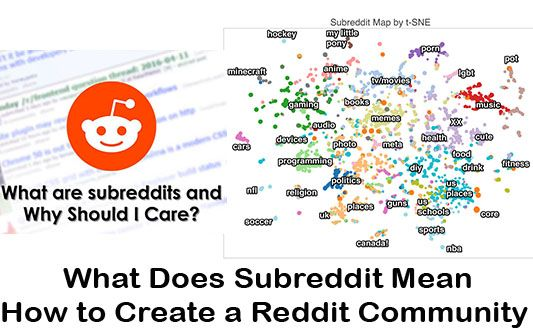 What Does Subreddit Mean How To Create A Reddit Community Techsovibe Tech Trends Politics To Focus