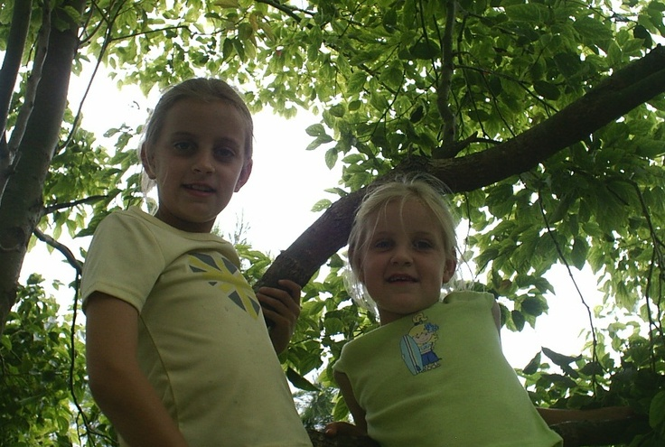 nothing better than climbing trees when you are young....