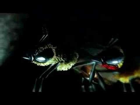 """Evil Bee"" - Menomena"
