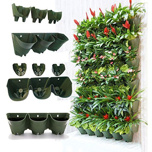 Vertical gardens are an idea way for those with small garden spaces or yards to still grow their favorite plants and vegetables.