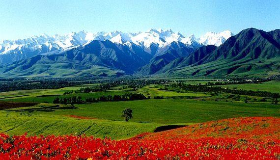 Ferghana Valley in Uzbekistan!!!