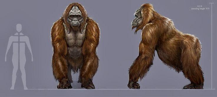 gigantopithecus | Gigantopithecus : the real yeti