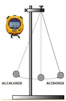 La madre de todas las enfermedades: La acidosis metabolica y su coreccion