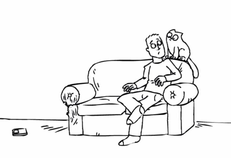 El gato está sobre el sofá. El gato está cerca del hombre.