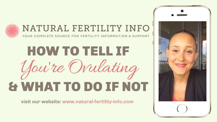 How do you know if you have ovulation and what to do if you do not have one …   – Schwangerschaft